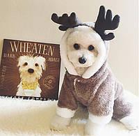 Одежда для собак . Утепленный комбинезон олень размер Xs