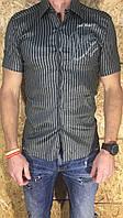 Рубашка мужская серая с коротким рукавом ОПТ  LV-215