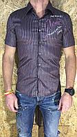 Рубашка мужская сиреневая с коротким рукавом ОПТ LV-214