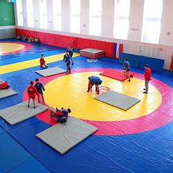Маты гимнастические, татами, борцовские ковры