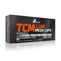 Olimp Labs, Креатин TCM Mega Caps 1100, 120 капсул