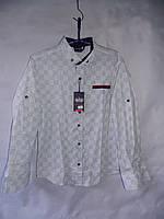 """Рубашка детская на мальчика с длинным рукавом (6-11 лет) """"Prest"""" RS2-5034"""