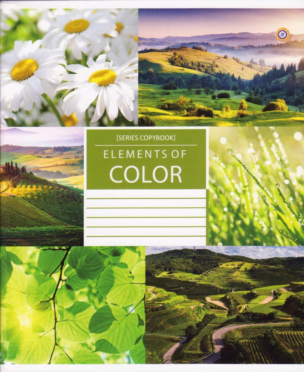 """Тетради 96 л. линия """"Color nature"""" 794723"""
