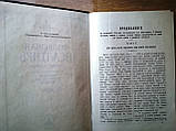 Толковая псалтирь в 2-х томах. Зигабен Евфимий, фото 4