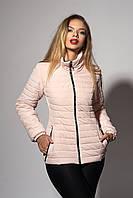 Женская демисезонная куртка. Код модели К-66-37-18. Цвет пудра.
