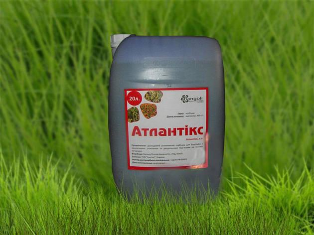 Гербицид Атлантикс (гербицид Харнес), фото 2
