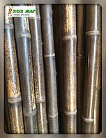 Бамбуковый ствол декоративный черный, длина 3м., д.4-5см Уценка!, фото 1