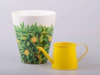 """Стакан для зелени """"лимон"""" с лейкой, 13х13х14 см"""
