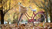 Велосипед - это стильно, модно и удобно 12 месяцев в году!