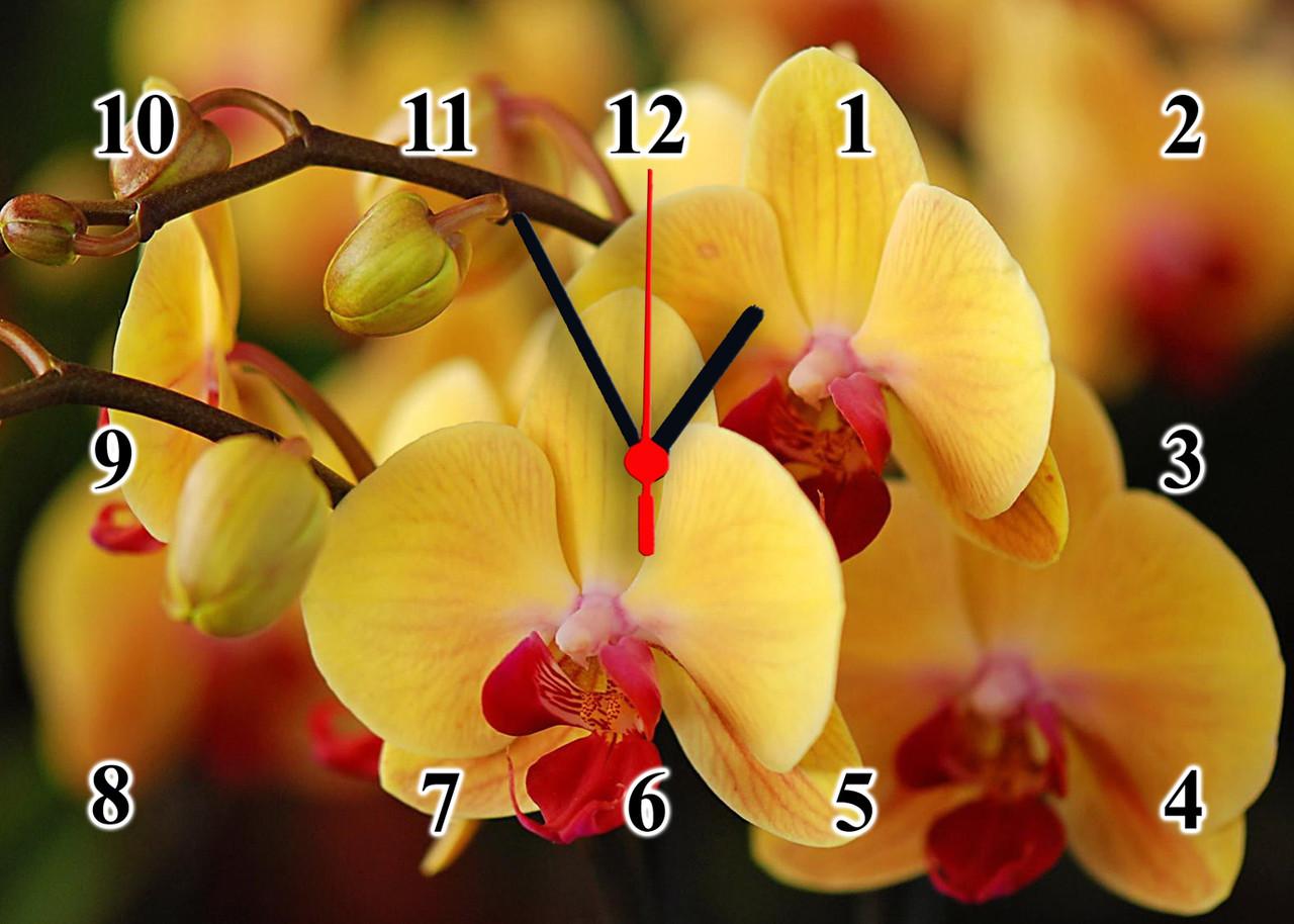 Часы настенные стеклянные Т-Ок 002 SG-25035023