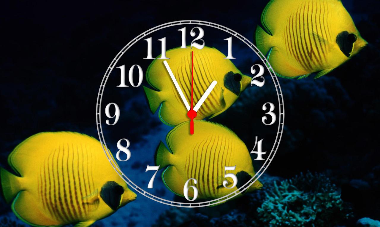 Часы настенные стеклянные Т-Ок 008 SG-30050010