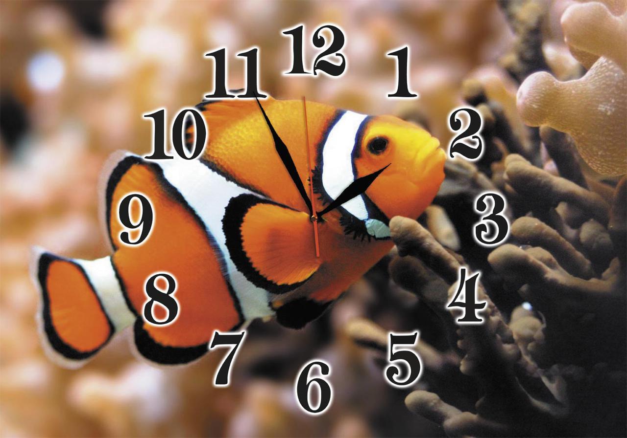 Годинники настінні скляні Т-Ок 009 SG-3505002