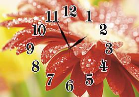 Годинники настінні скляні Т-Ок 009 Червоний квітка великий SG-3505005