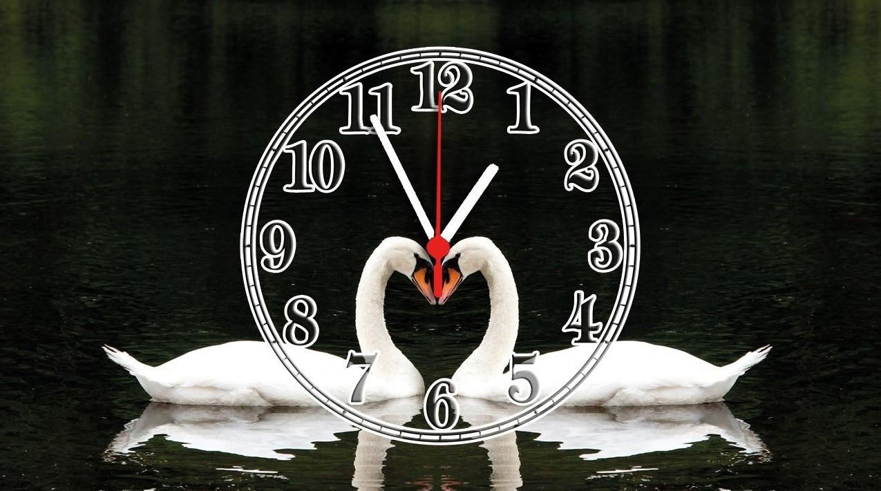 Часы настенные стеклянные Т-Ок 010 SG-2504507