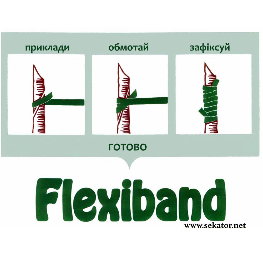 Каучукові гумки для щеплення Flexiband
