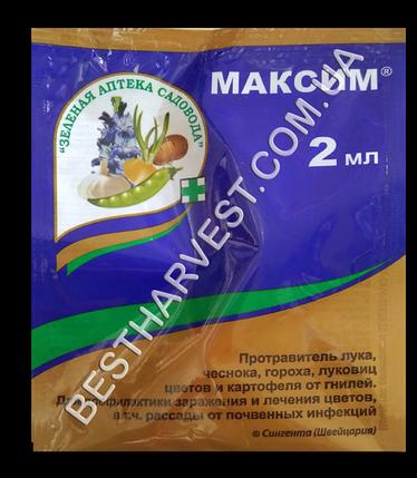 Протравитель «Максим» 2 мл, фото 2