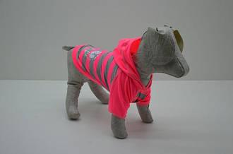 Платечка, футболочки, маєчки для котів і собак