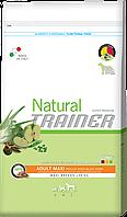 Trainer NATURAL Adult MAXI With Chicken Rice and Aloe Vera Корм для собак с курицей, рисом и алое вера