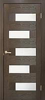 Межкомнатные двери Домино ПО каштан, фото 1