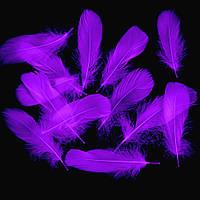 Перья Гуся (перо) Декоративные Фиолетовые 5-15 см 100 шт/уп