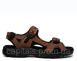 "Мужские сандали ECCO Sandals ""Dark Brown"""