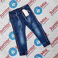 Детские джинсовые брюки джоггеры для мальчиков оптом Goloxy