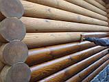 Шлифовка + покраска  деревянного дома Харьков, Киев, Одесса, Днепр, фото 5
