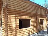 Шлифовка + покраска  деревянного дома Харьков, Киев, Одесса, Днепр, фото 4