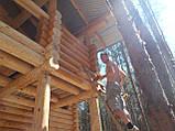 Шлифовка + покраска  деревянного дома Харьков, Киев, Одесса, Днепр, фото 6