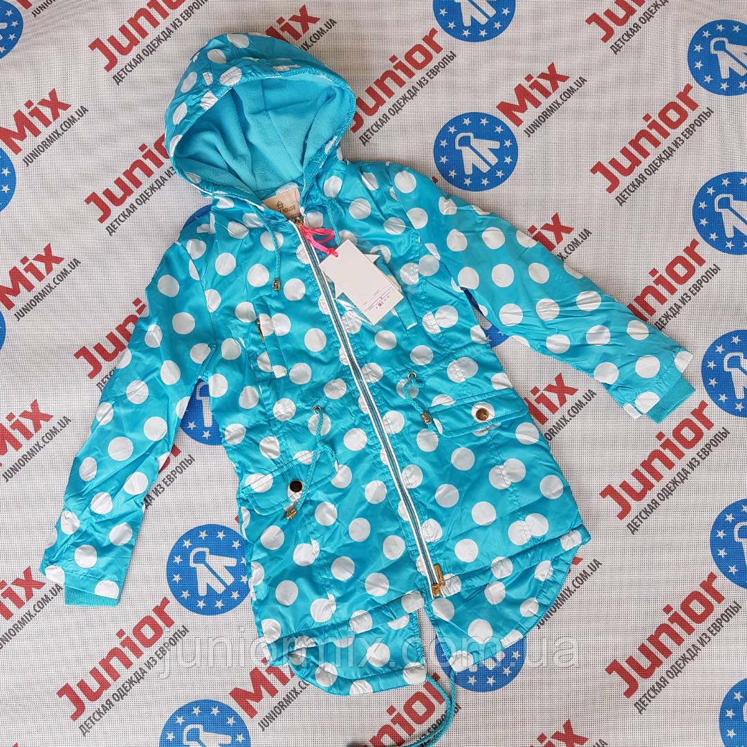 Куртка весенняя на девочку в горошек под шнурок HAPPY HOUSE