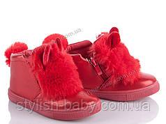 Детская демисезонная обувь бренда Clibee - Caleton (New TLCK) для девочек (рр. с 24 по 29)