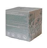 Пракшалан Фиточай для очистки организма от шлаков, 20 пакетиков Тибетская формула, фото 2