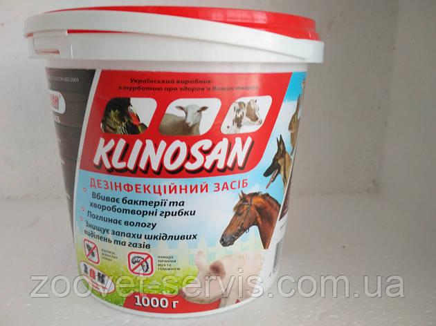 Порошок для сухой дезинфекции КЛИНОСАН, фото 2