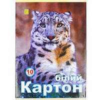 БЕЛЫЙ КАРТОН А4 10 ЛИСТОВ №2 «КОЛЕНКОР» BKN10/2