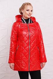 Демисезонная удлиненная куртка Ruth  полуприлегающего силуэта со съемным капюшоном, трикотажным воротом и застежкой молния. (6 цветов)(128) 206