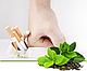 Травяной чай от курения из Беларуси., фото 3