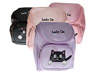 8210-288 сумка кот Код:10024721