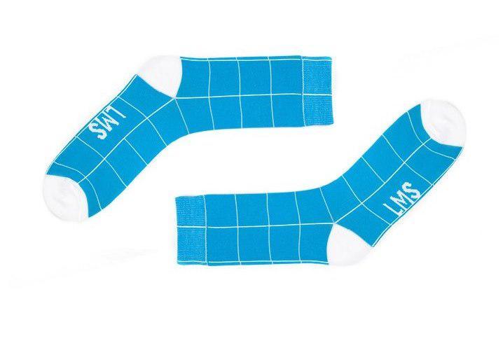 Мужские голубые носки в квадраты. Артикул: LMS-3