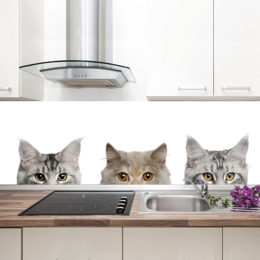 """Фартук на кухню / Скинали """"Котята"""""""