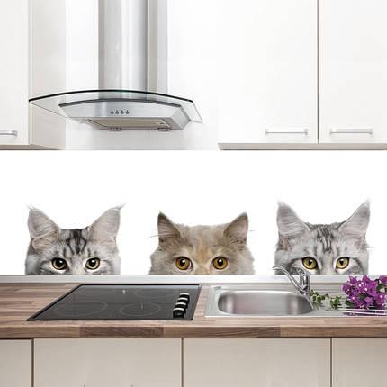 """Фартук на кухню / Скинали """"Котята"""", фото 2"""