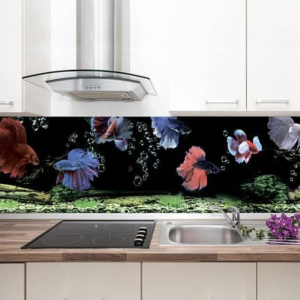 """Фартук на кухню / Скинали """"Рыбки"""", фото 2"""
