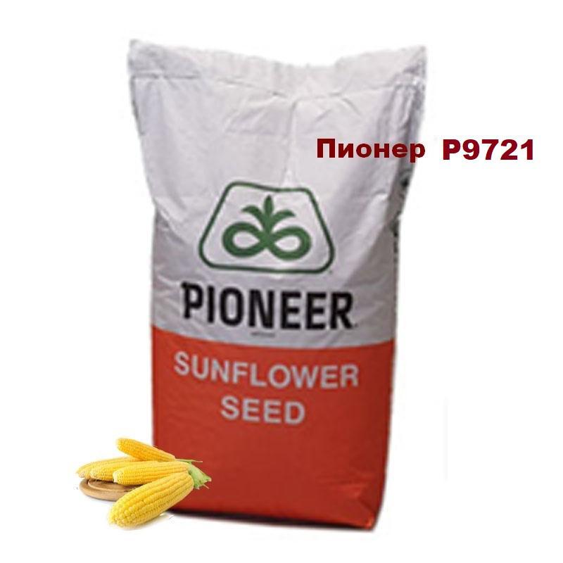Насіння кукурудзи Піонер Р9721 /ФАО 380/ Семена кукурузы Пионер Р9721 /США/