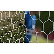 Сетка для футбольных ворот 7,33 x 2,44 м Yakimasport (100113), фото 3