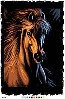 Картинка на канве А-2 Конь