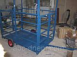Электронные весы для взвешивания свиней и мелкого рогатого скота, фото 5