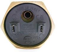 Тэн с резьбой Thermowatt 1¼G 2 кВт, под анод