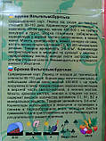 Бруква Вильгельмсбургська 2 г, фото 2
