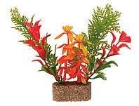 Растение для аквариума Trixie (Трикси) пластик TX-8933, 12 см