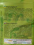Капуста Орбіта F1 0,25 г, фото 2