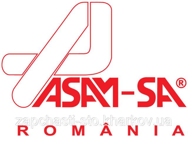 Автозапчасти ASAM, какие имеем отзывы? Кто производит их?